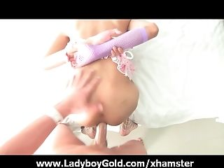 Ladyboy Peach Barebacked And Cum Drenched