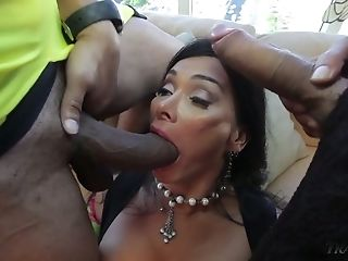 Sexy curvaceous ladyboy Vaniity blows fat cock while being analfucked